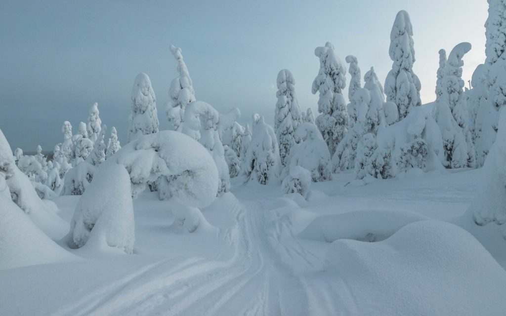 Living in Finland 2