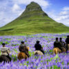 Icelandic Names