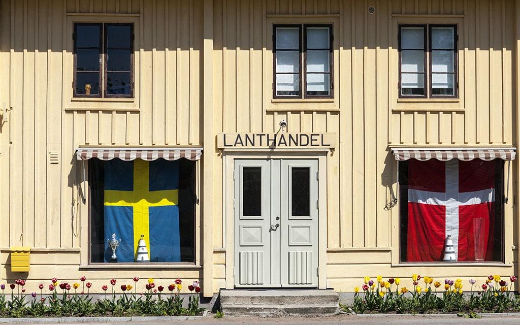 Denmark Vs Sweden 5